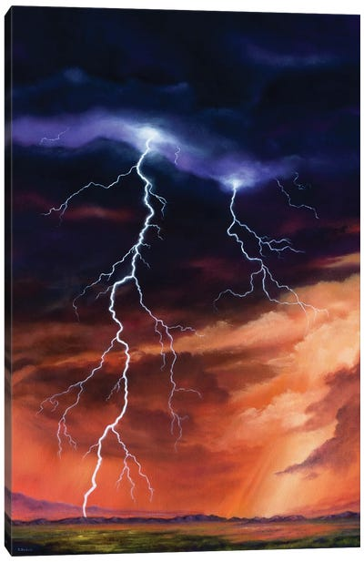 Force Of Nature Canvas Art Print