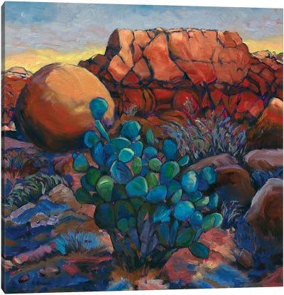 Desert Tableau Canvas Art Print