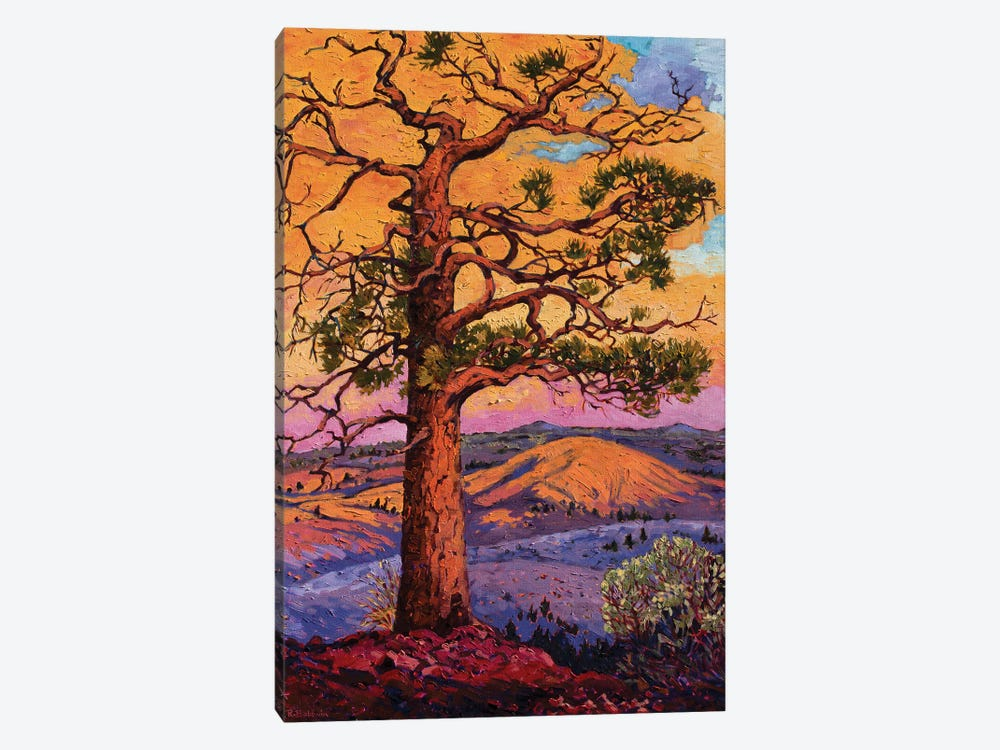 Grandfather Pine Tree by Rebecca Baldwin 1-piece Canvas Art Print