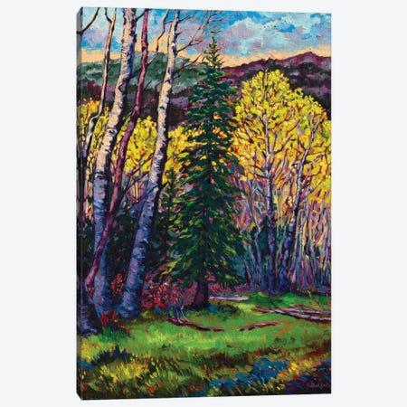 High Country Spring Canvas Print #RBC21} by Rebecca Baldwin Canvas Art Print