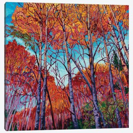 Autumn Song Canvas Print #RBC2} by Rebecca Baldwin Canvas Wall Art