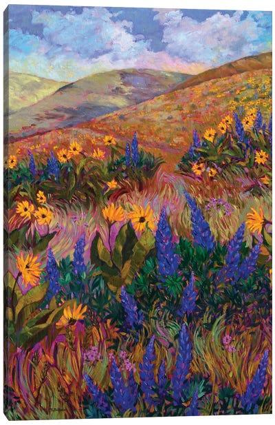 Columbia River Hills Canvas Art Print