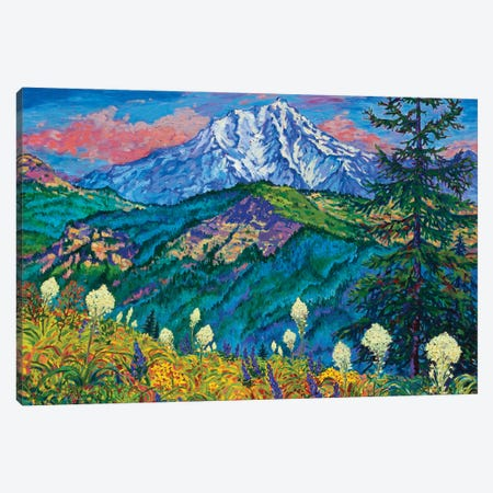 Mountain Splendor Canvas Print #RBC34} by Rebecca Baldwin Canvas Art Print