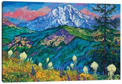 Mountain Splendor Canvas Art Print