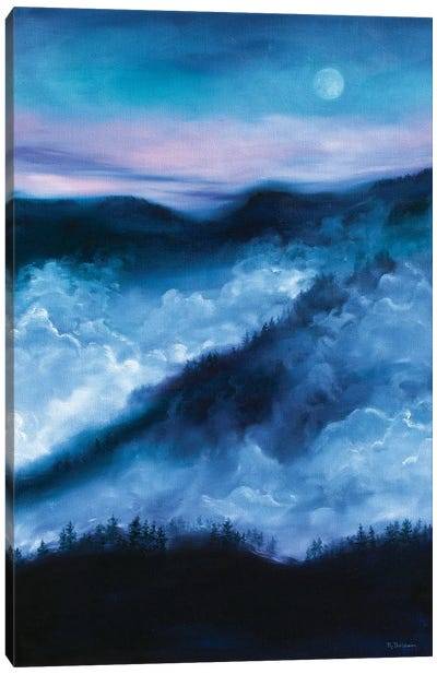 Night's End Canvas Art Print
