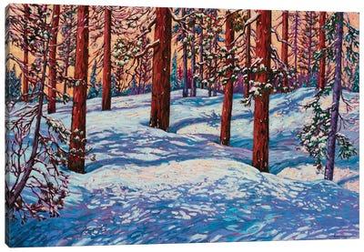 Perfect Mountain Day Canvas Art Print
