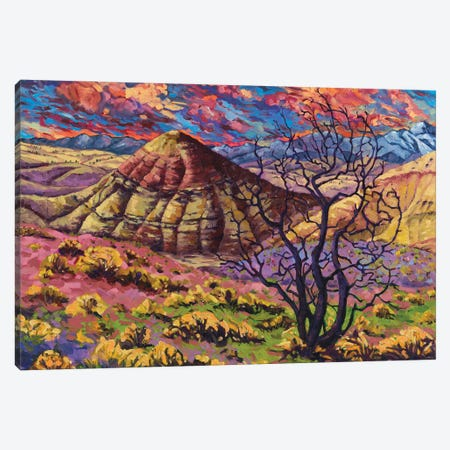 Painted Hills Canvas Print #RBC38} by Rebecca Baldwin Canvas Wall Art