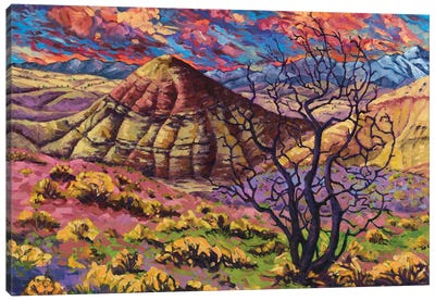 Painted Hills Canvas Art Print