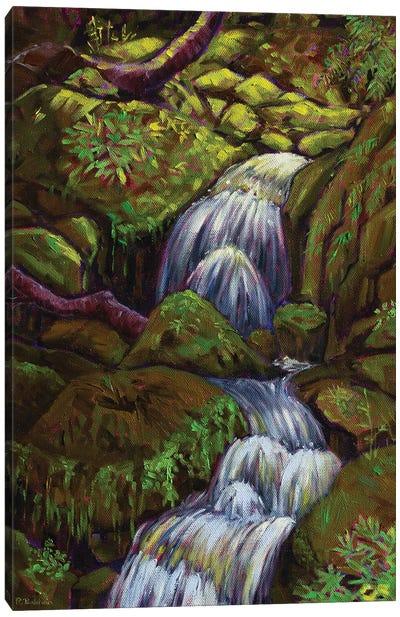 Babbling Brook Canvas Art Print