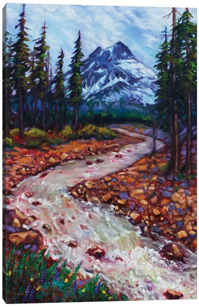 Spring Snowmelt Canvas Art Print