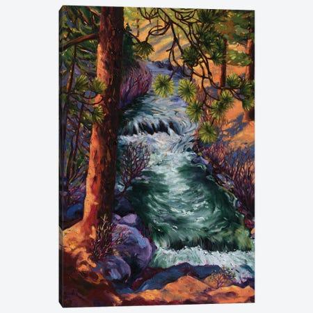 Whychus Creek Canvas Print #RBC57} by Rebecca Baldwin Art Print