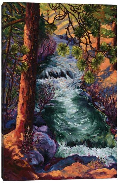 Whychus Creek Canvas Art Print