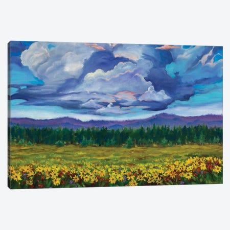 Big Summit Prairie Canvas Print #RBC5} by Rebecca Baldwin Canvas Print