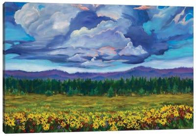 Big Summit Prairie Canvas Art Print