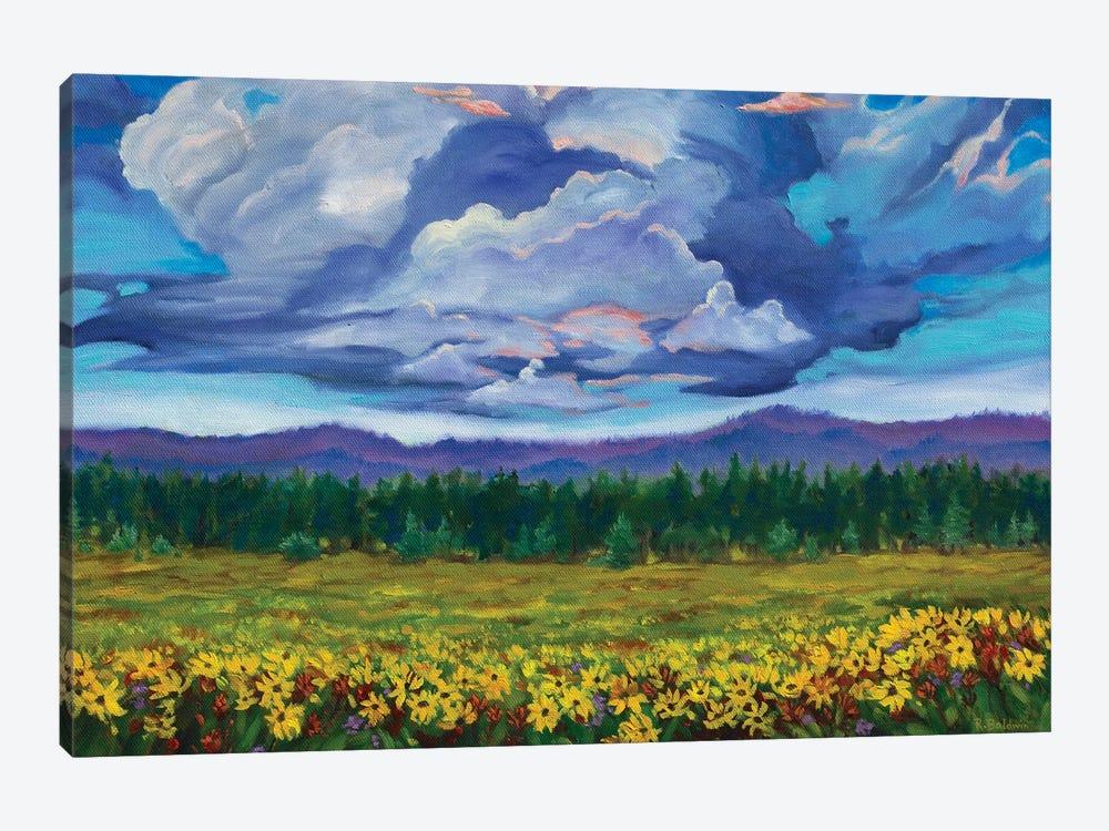 Big Summit Prairie by Rebecca Baldwin 1-piece Canvas Wall Art