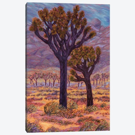 Mojave Storm Canvas Print #RBC61} by Rebecca Baldwin Canvas Print