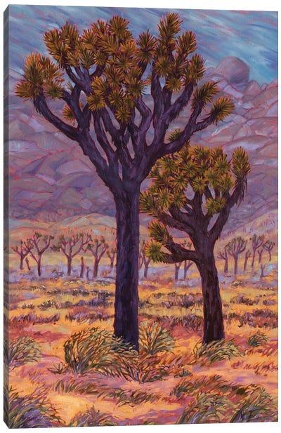 Mojave Storm Canvas Art Print