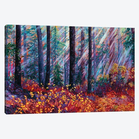Forest Cathedral Canvas Print #RBC8} by Rebecca Baldwin Canvas Wall Art