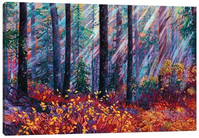 Forest Cathedral Canvas Art Print