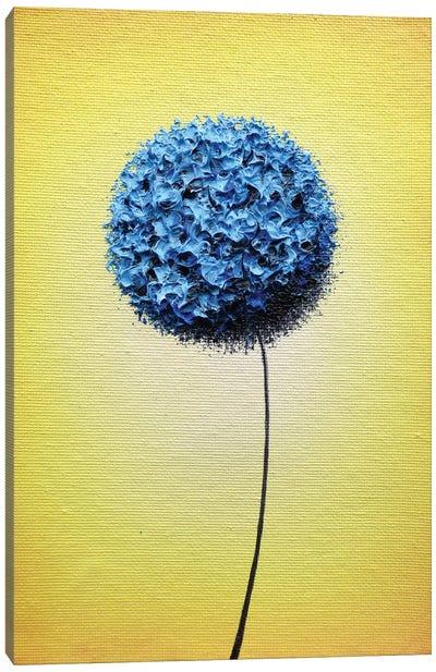 Scattering Sunshine Canvas Art Print