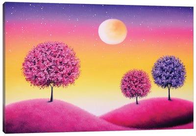 Share The Nights Canvas Art Print
