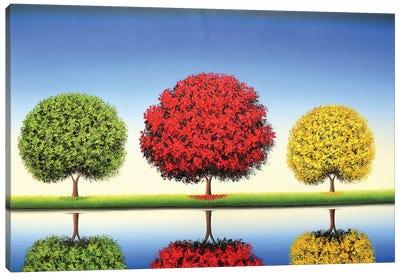 Boundless Skies Canvas Art Print