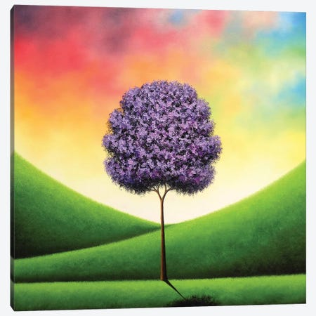 A Day To Carry Canvas Print #RBI2} by Rachel Bingaman Canvas Artwork
