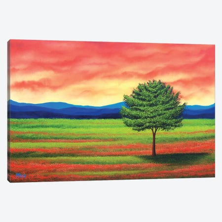 Last Glance Canvas Print #RBI38} by Rachel Bingaman Canvas Wall Art