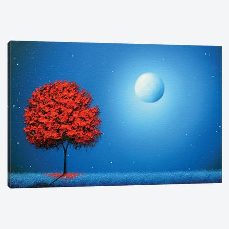 Some Night Soon Canvas Print #RBI65} by Rachel Bingaman Canvas Wall Art