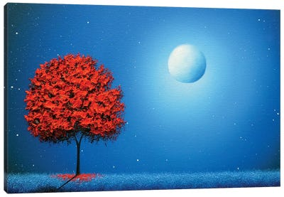 Some Night Soon Canvas Art Print