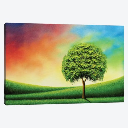 Still Shines The Sun Canvas Print #RBI70} by Rachel Bingaman Canvas Wall Art
