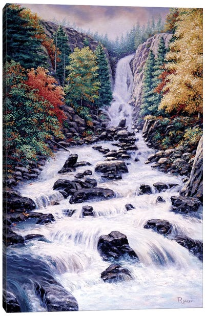 Fish Creek Falls Canvas Art Print