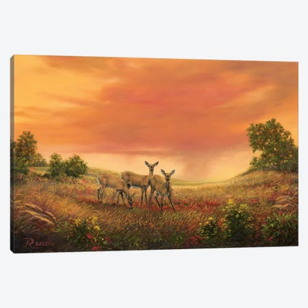 3 Sisters Of The Prairie Canvas Print #RBL1} by Rod Bailey Canvas Art Print