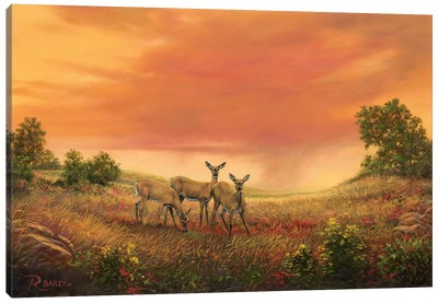 3 Sisters Of The Prairie Canvas Art Print