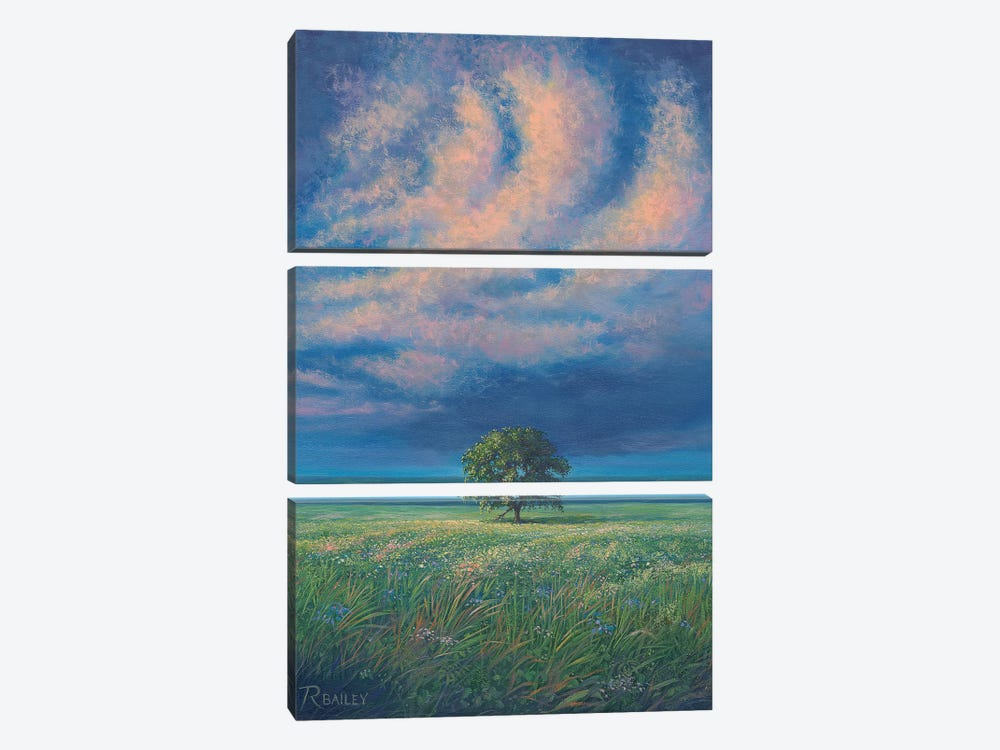I Am Not Alone by Rod Bailey 3-piece Canvas Art Print
