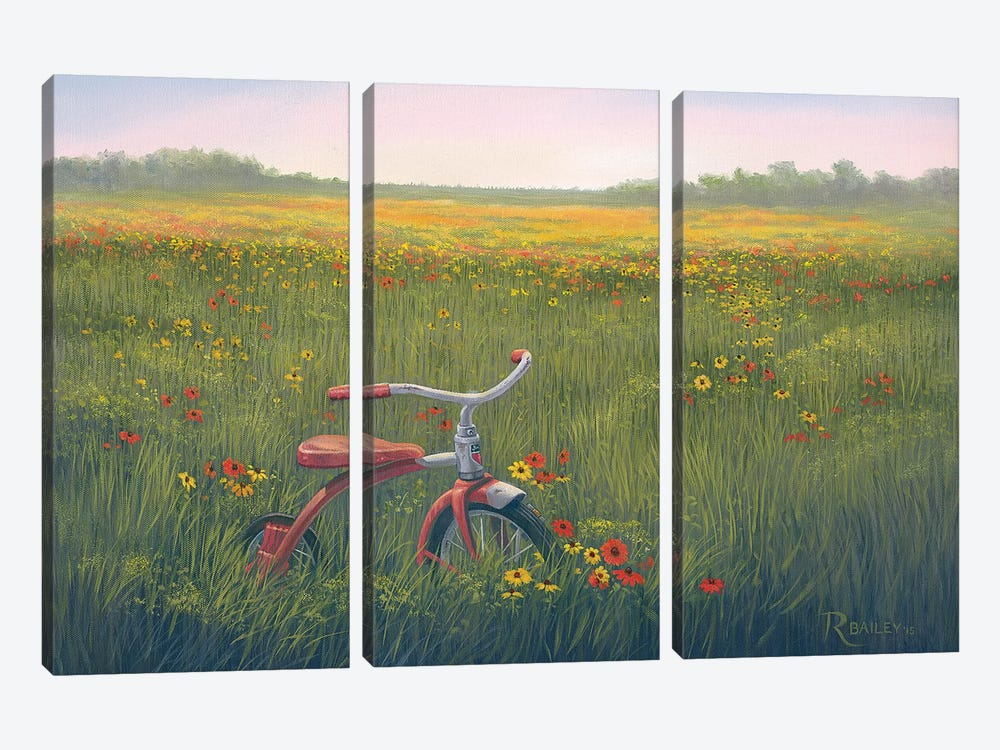 Left Behind by Rod Bailey 3-piece Canvas Art Print