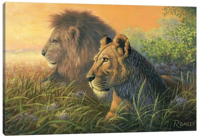 Lion Queen Canvas Art Print