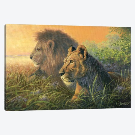 Lion Queen Canvas Print #RBL28} by Rod Bailey Canvas Wall Art