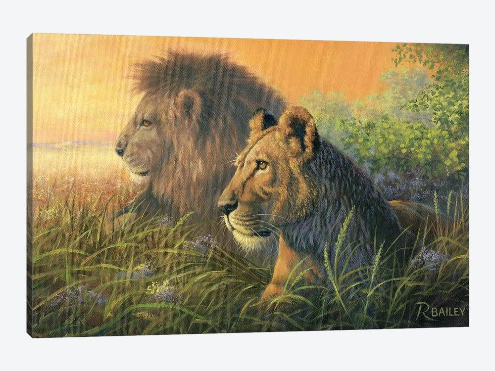 Lion Queen by Rod Bailey 1-piece Canvas Art Print