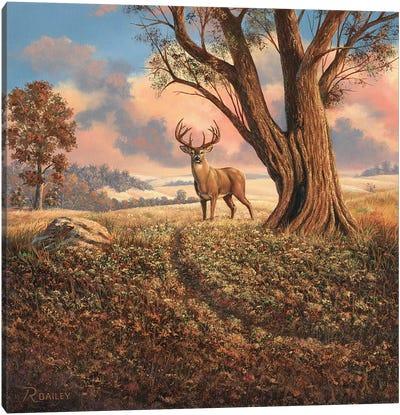 Loners Canvas Art Print