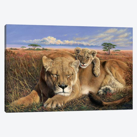 Mammas Tired Canvas Print #RBL30} by Rod Bailey Art Print
