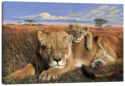 Mammas Tired Canvas Art Print