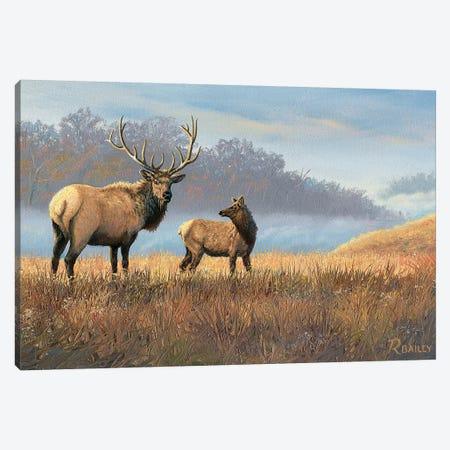 Morning Mist Canvas Print #RBL31} by Rod Bailey Art Print