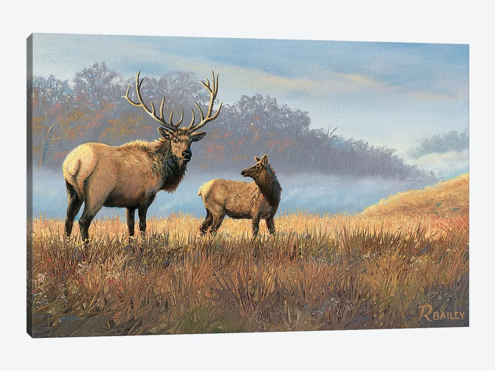 Morning Mist by Rod Bailey 1-piece Canvas Print
