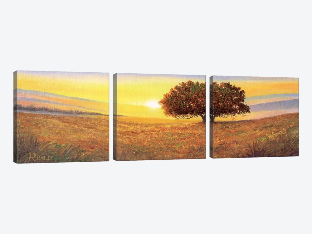 One And Only by Rod Bailey 3-piece Canvas Wall Art