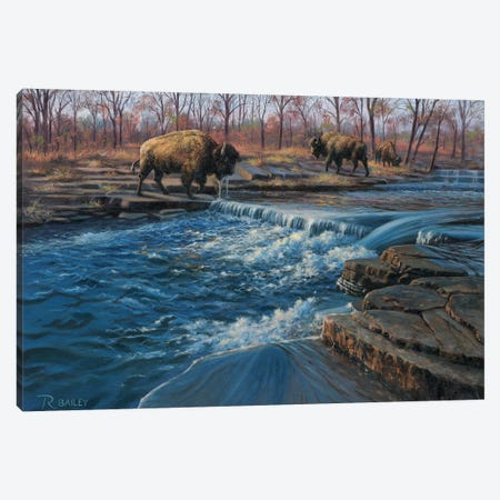 Osage Watering Hole Canvas Print #RBL36} by Rod Bailey Canvas Wall Art