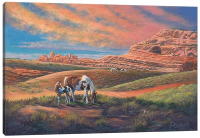 Paints Out West Canvas Art Print