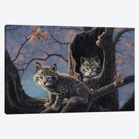 Purrrfect Home Canvas Print #RBL38} by Rod Bailey Canvas Art Print