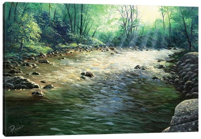 River Dance Canvas Art Print