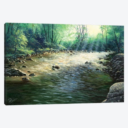 River Dance Canvas Print #RBL40} by Rod Bailey Canvas Artwork